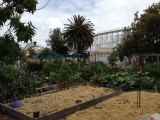 Veg Out - Luna Park view