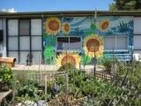 Veg Out wall mural...
