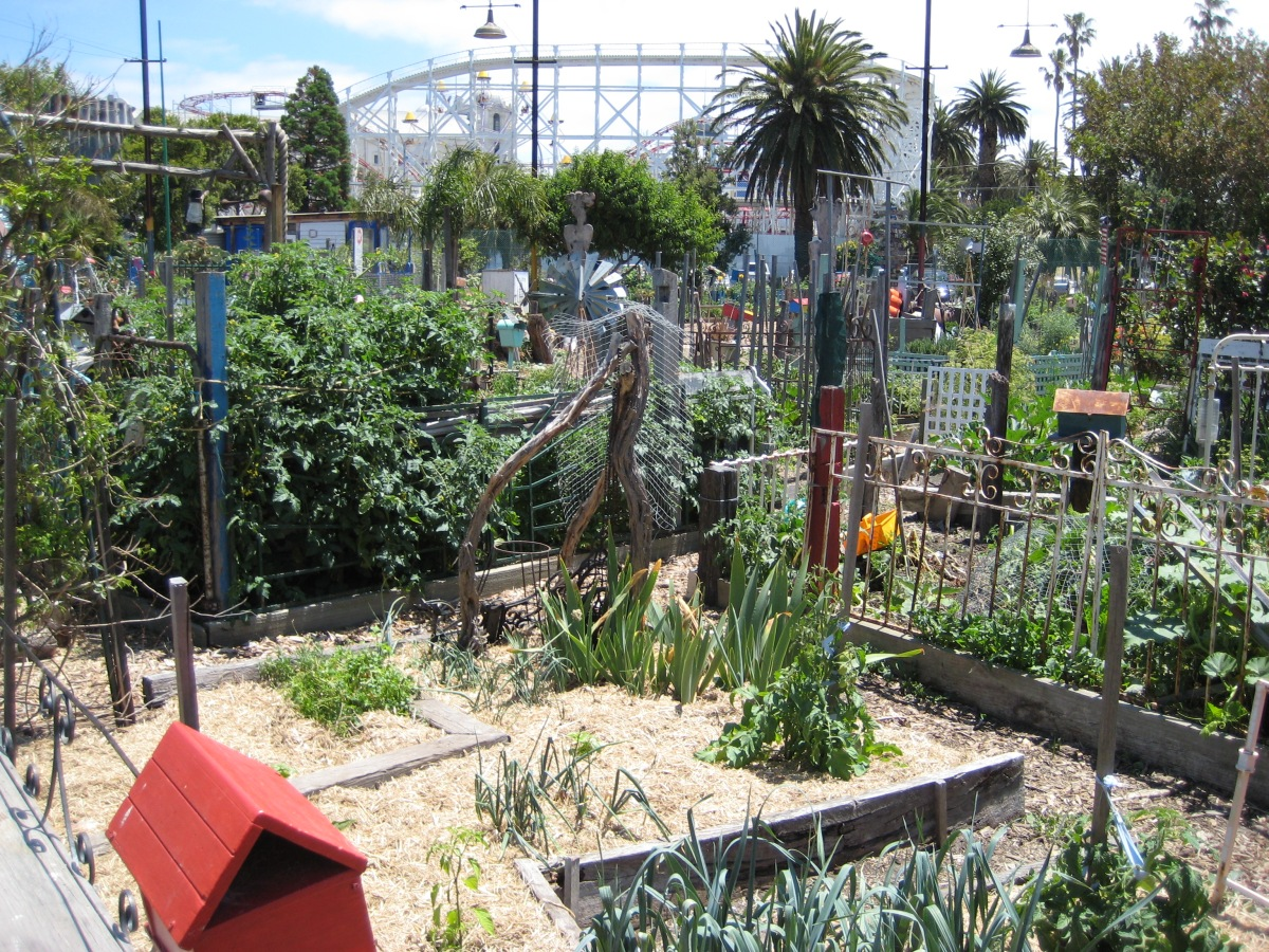 Veg Out - looking out towards Luna Park...
